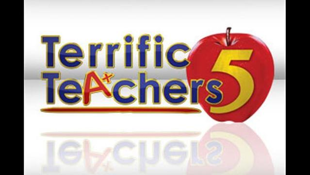 Terrific Teacher: Wisconsin International School