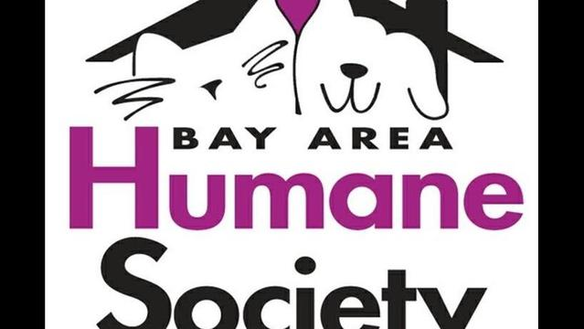 Pet Saver: Bay Area Humane Society