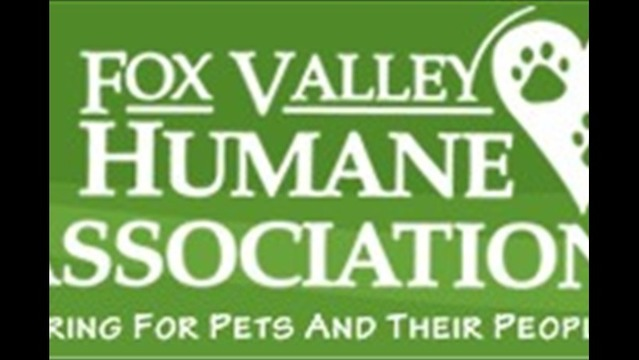 Vote for the Fox Valley Humane Association