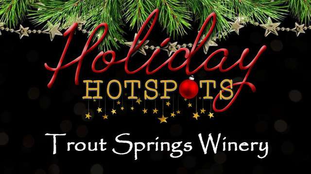 Stone Harbor Resort Holiday Hotspots Giveaway