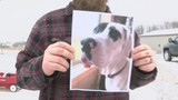 UPDATE: Man Who Allegedly Shot Waupaca Co. Dog Pleads Not Guilty